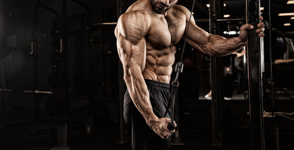 Using MCT's When Bodybuilding