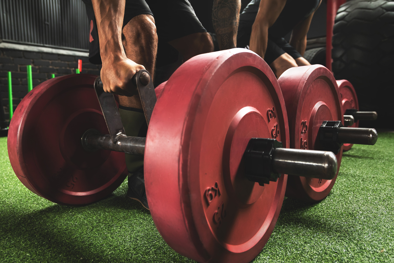 Fat Adaptation And Endurance Performance
